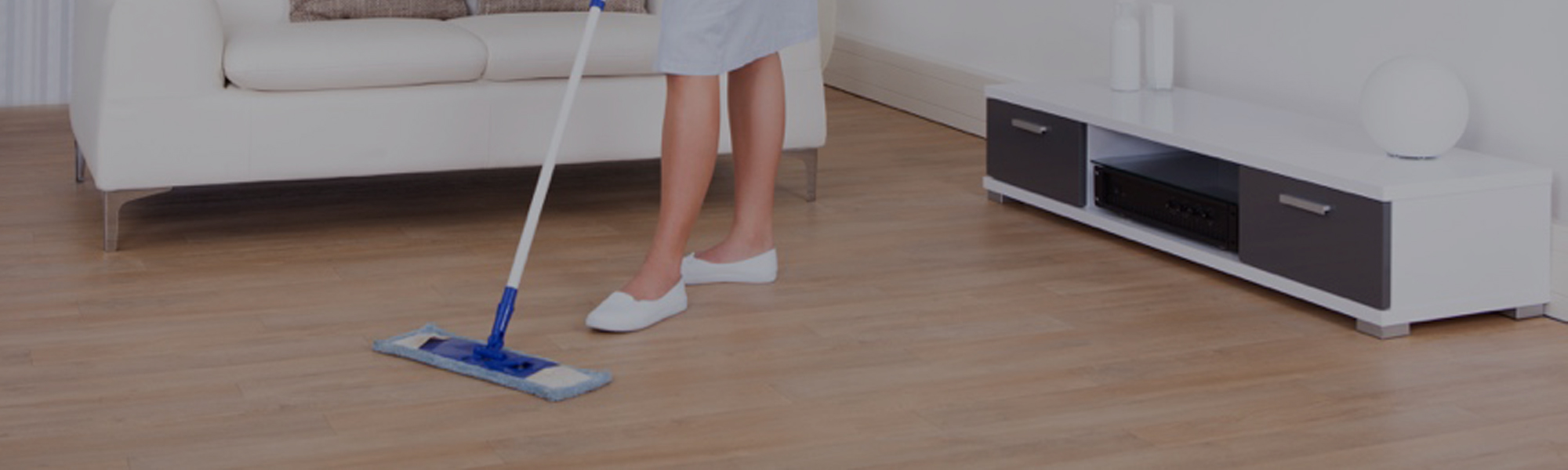 House Domestic cleaning services